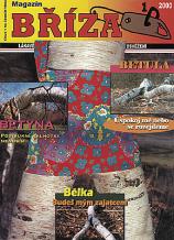 Lenka Klodová: Magazín Bříza (Birch)